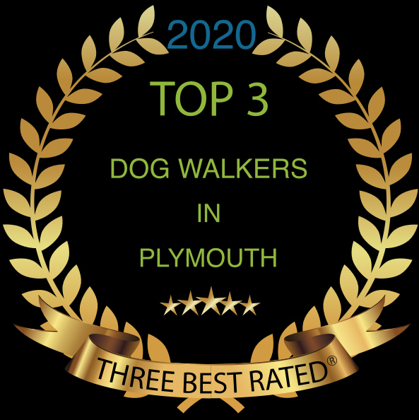 award top dog walker